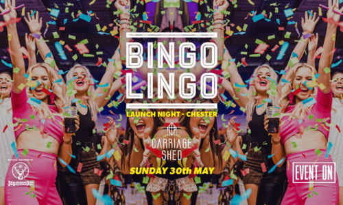 Bingo Lingo at The Carriage Shed – Extended Session