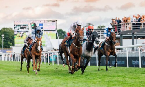 Chester Races – City Plate Day