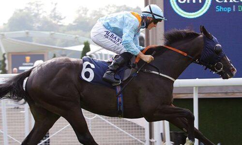 Chester Races – Season Finale