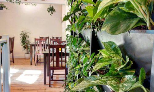 The Green House Bar & Restaurant