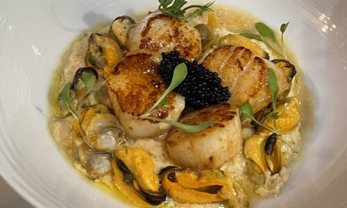 WLGT Dining Review – The Black Dog