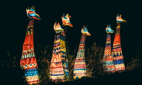 Magical Christmas event 'The Lanterns' returns to Chester Zoo